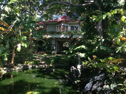 Real Estate for Sale, ListingId: 31536327, Naalehu,HI96772