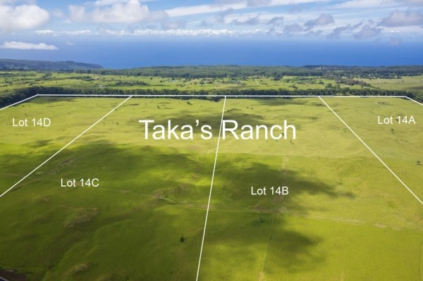 Real Estate for Sale, ListingId: 26582524, Honokaa, HI  96727