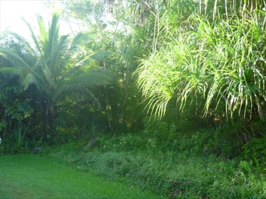 Real Estate for Sale, ListingId: 25787600, Pahoa,HI96778