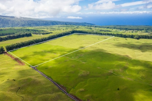Real Estate for Sale, ListingId: 28096367, Honokaa, HI  96727