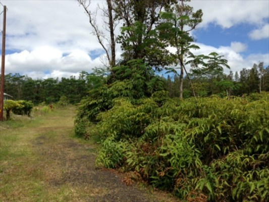 Real Estate for Sale, ListingId: 26154974, Pahoa, HI  96778