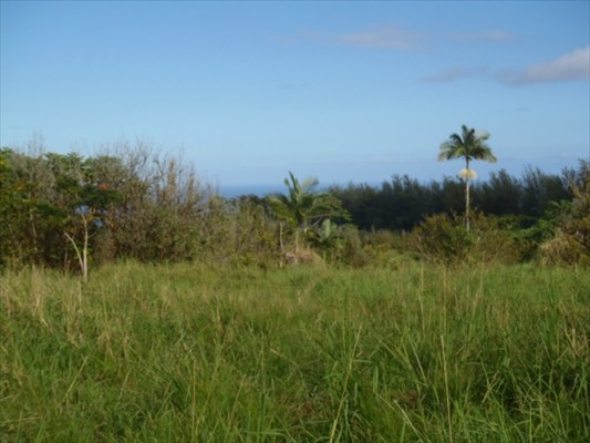 Real Estate for Sale, ListingId: 26324103, Papaikou, HI  96781
