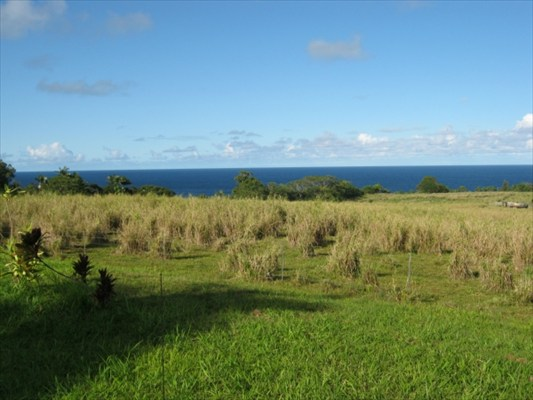 Real Estate for Sale, ListingId: 26324066, Papaikou, HI  96781