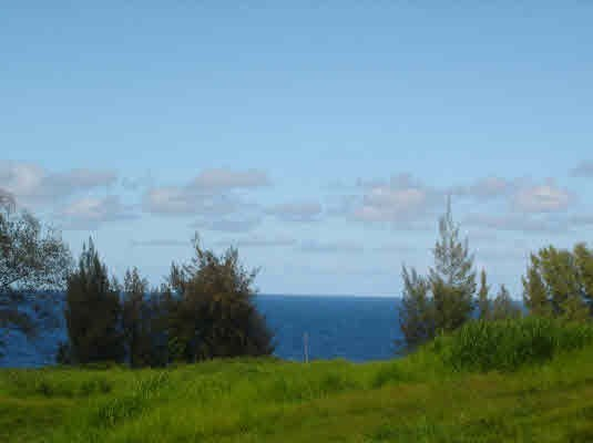 Real Estate for Sale, ListingId: 26469258, Pepeekeo, HI  96783
