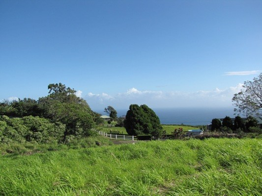 Real Estate for Sale, ListingId: 26786271, Honokaa, HI  96727