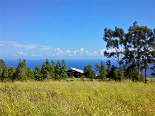 Real Estate for Sale, ListingId: 26927193, Laupahoehoe, HI  96764