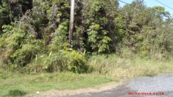 Real Estate for Sale, ListingId: 27006453, Mtn View,HI96771
