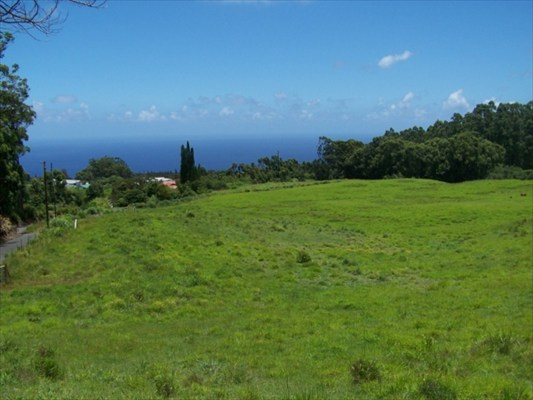 Real Estate for Sale, ListingId: 26965788, Honokaa, HI  96727