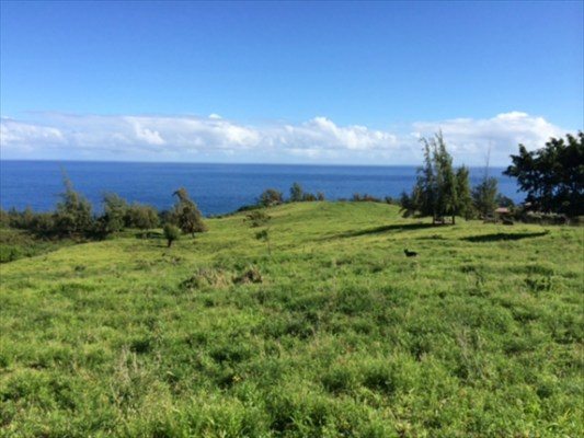 Real Estate for Sale, ListingId: 27239948, Honokaa, HI  96727