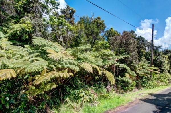 Real Estate for Sale, ListingId: 28517946, Volcano,HI96785