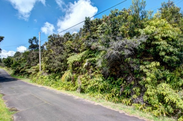 Real Estate for Sale, ListingId: 28517947, Volcano, HI  96785