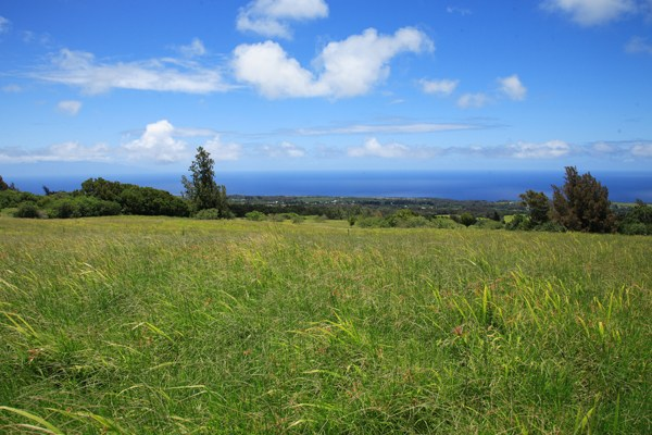Land for Sale, ListingId:27468266, location: Hall Road Kapaau 96755