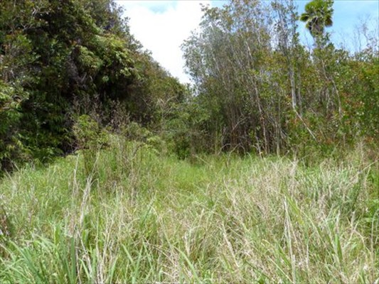 Land for Sale, ListingId:27620710, location: North Glenwood Rd. Volcano 96785