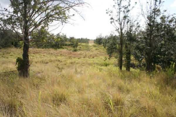 Real Estate for Sale, ListingId: 27584733, Kailua Kona,HI96740