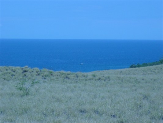 Land for Sale, ListingId:29055099, location: Kapaau 96755