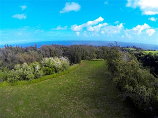 Land for Sale, ListingId:27900164, location: Pratt Rd Kapaau 96755