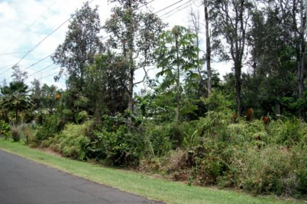 Real Estate for Sale, ListingId: 28367033, Pahoa,HI96778