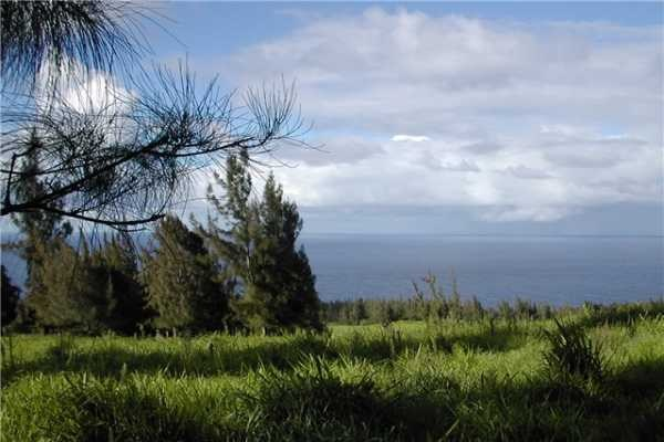 Real Estate for Sale, ListingId: 28872867, Honokaa, HI  96727
