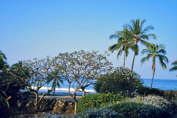 Real Estate for Sale, ListingId: 28367036, Kailua Kona,HI96740