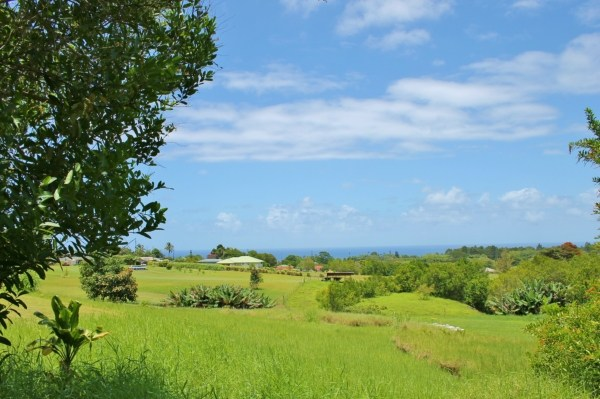 Real Estate for Sale, ListingId: 28633948, Pepeekeo, HI  96783