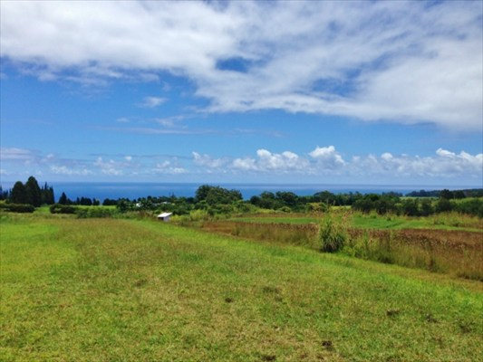 Real Estate for Sale, ListingId: 29032411, Hakalau, HI  96710