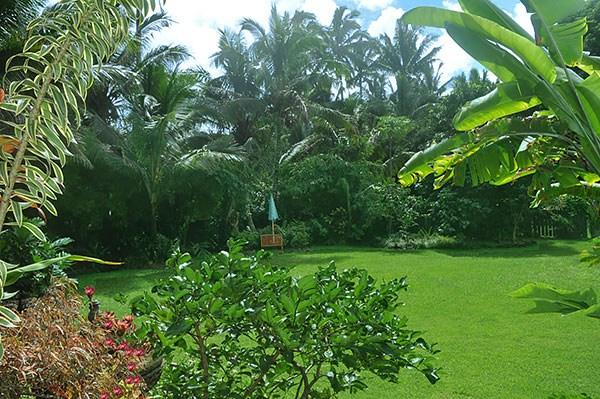 Real Estate for Sale, ListingId: 30598009, Pahoa,HI96778