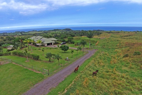 Real Estate for Sale, ListingId: 30844095, Papaikou, HI  96781