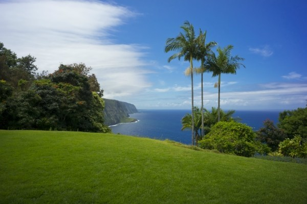 Real Estate for Sale, ListingId: 29599159, Honokaa, HI  96727