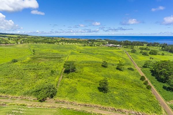Real Estate for Sale, ListingId: 29931411, Pepeekeo,HI96783