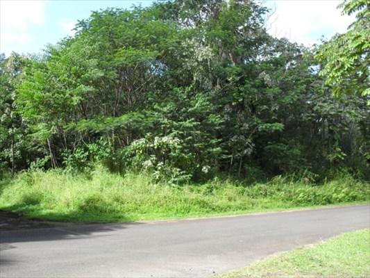 Real Estate for Sale, ListingId: 29833645, Pahoa,HI96778