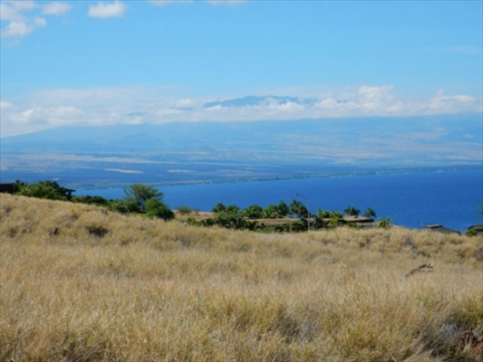 Land for Sale, ListingId:29931419, location: Kapaau 96755