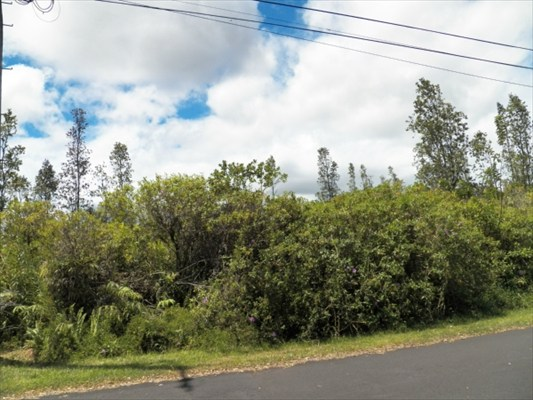 Real Estate for Sale, ListingId: 30016287, Pahoa, HI  96778