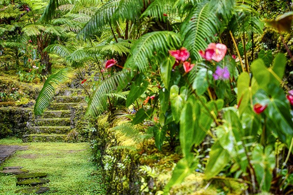 Real Estate for Sale, ListingId: 30136172, Kailua Kona,HI96740
