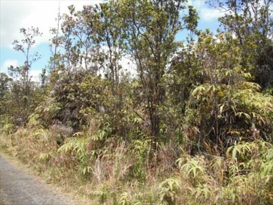Real Estate for Sale, ListingId: 30016262, Volcano,HI96785