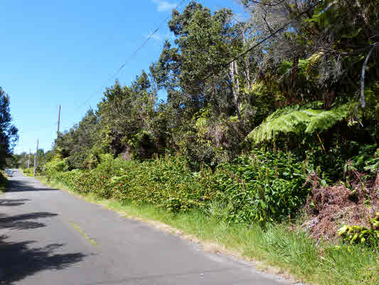 Real Estate for Sale, ListingId: 30632476, Volcano,HI96785