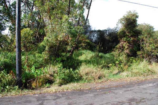 Real Estate for Sale, ListingId: 30742824, Volcano,HI96785