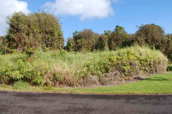 Real Estate for Sale, ListingId: 30742825, Volcano, HI  96785