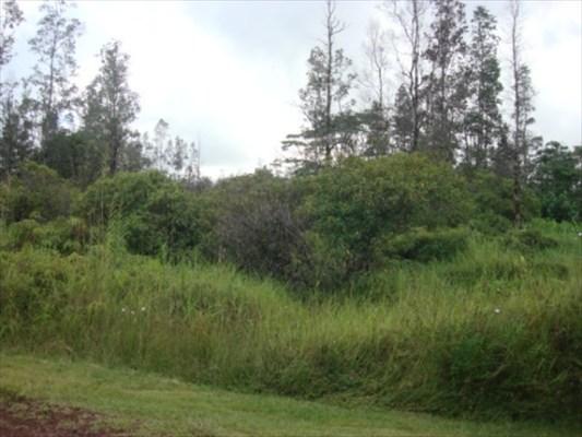 Real Estate for Sale, ListingId: 30597825, Pahoa,HI96778