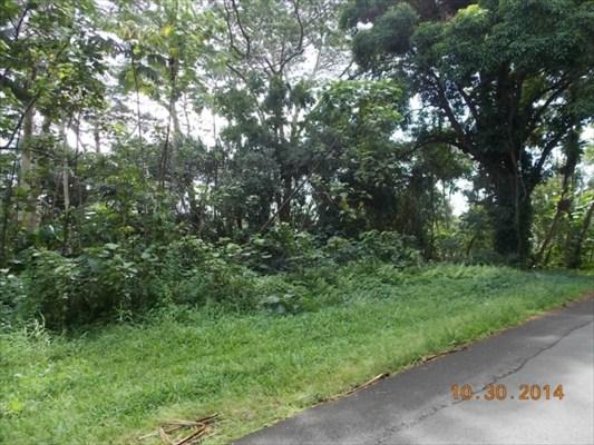 Real Estate for Sale, ListingId: 30506122, Pahoa,HI96778