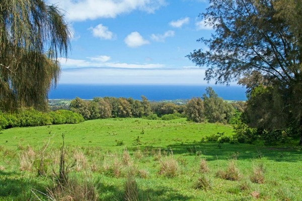 Land for Sale, ListingId:30694348, location: Hall Road Kapaau 96755