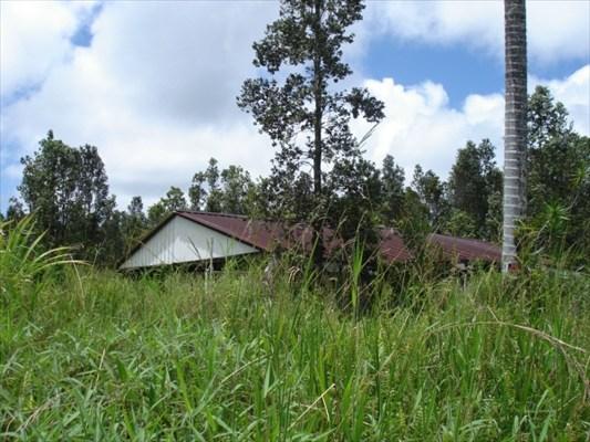 Real Estate for Sale, ListingId: 34642923, Mtn View,HI96771