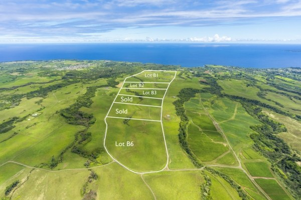Real Estate for Sale, ListingId: 31444564, Papaikou, HI  96781