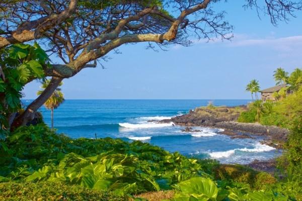 Real Estate for Sale, ListingId: 31371474, Kailua Kona,HI96740