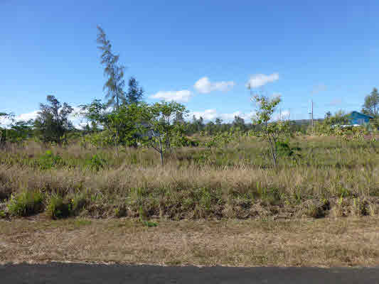 Real Estate for Sale, ListingId: 31353754, Pahoa, HI  96778