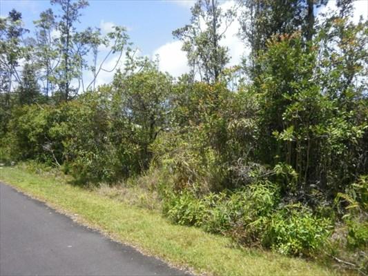 Real Estate for Sale, ListingId: 31709117, Pahoa,HI96778