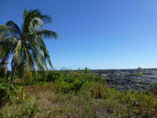 Real Estate for Sale, ListingId: 31669083, Pahoa,HI96778