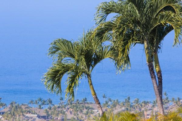 Single Family Home for Sale, ListingId:31851128, location: 78-6980 KALUNA ST Kailua Kona 96740