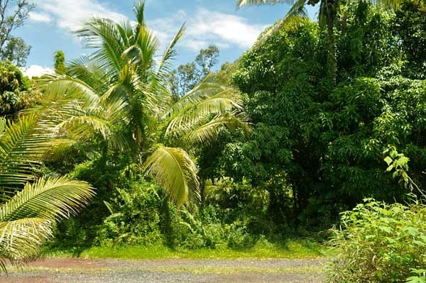 Real Estate for Sale, ListingId: 31900373, Pahoa,HI96778