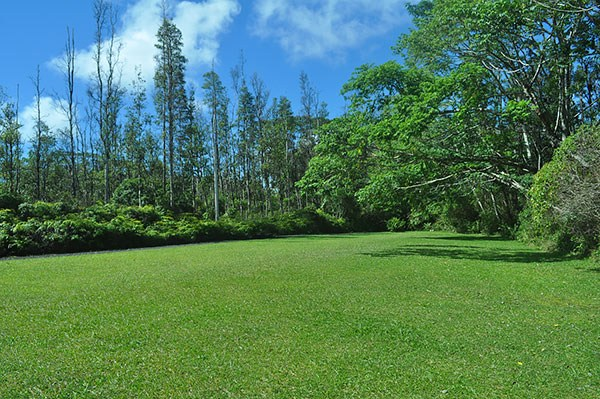 Real Estate for Sale, ListingId: 31985488, Pahoa, HI  96778
