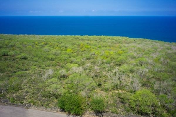 59.4 acres Kailua-Kona, HI